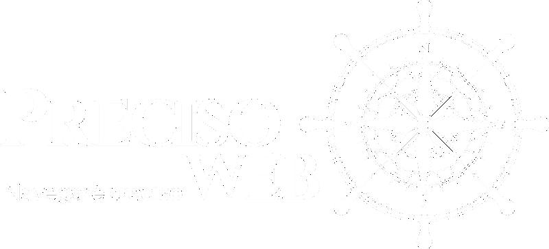 preciso web logo footer